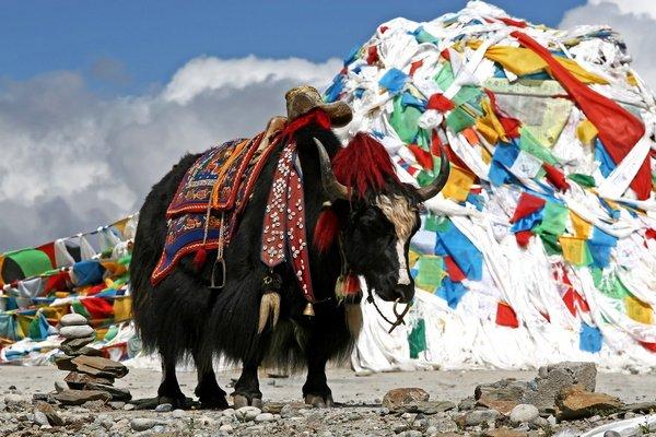Китай, Тибет